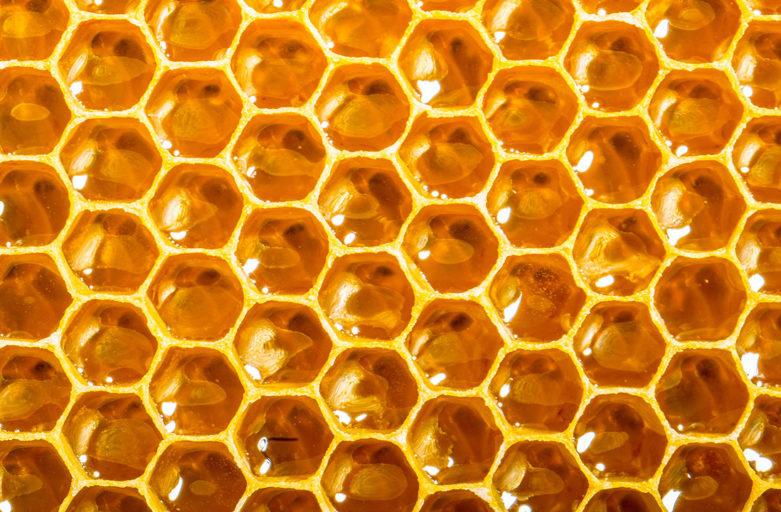 ruche, apiculture, apiphobie